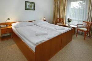 hotel-devin (1)