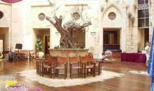 olive-tree-hotel-jerusalem-jerusalem_290620101521430522